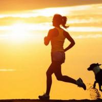 Vũ Đinh - 21 ngày tập thể dục buổi sáng
