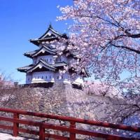 Dream  Care -  Học bổng JDS Nhật Bản