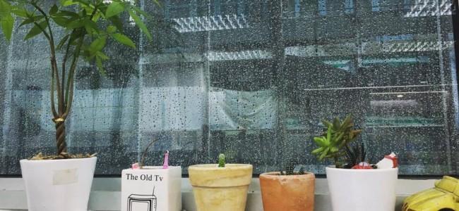 Adecco Vietnam tuyển Nhân viên chăm sóc khách hàng tại TP.HCM